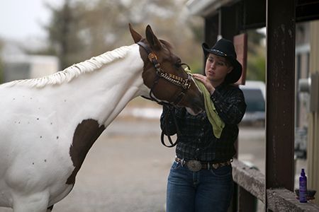 Equine Care & Basic Riding photo